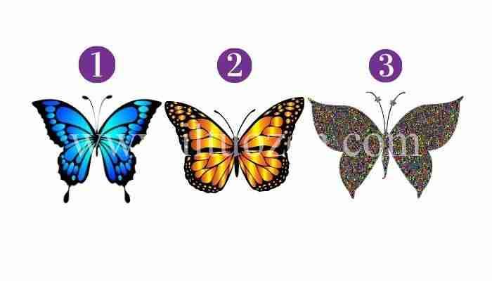 Scegli una farfalla e riceverai un potente messaggio spirituale