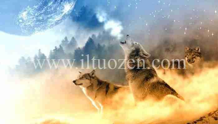 Se la paura ti tormenta leggi la parabola del lupo immaginario