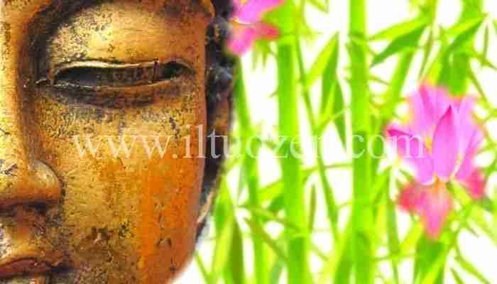 Se non riesci a mantenere la calma leggi la favola di Buddha