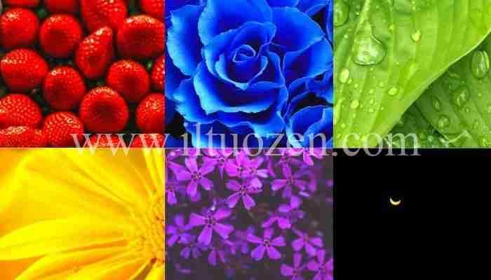 Il colore che più ti piace può dire molto della tua personalità. Scegline uno tra questi