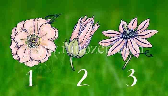 Scegli un fiore e ti darò un consiglio per il mese di Marzo