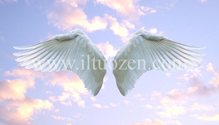 Gli angeli ti parlano ogni singolo giorno. Ecco in che modo: