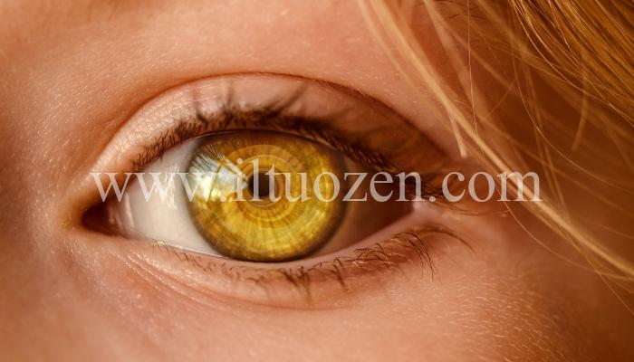 Lo sapevi che dall'iride del tuo occhio puoi capire se sei predisposto a contrarre gravi malattie? Ecco perché e come fare a capirlo