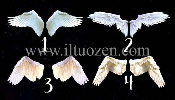 Che tipo di ali angeliche indosseresti? Dimmelo e ti farò conoscere il messaggio del tuo spirito guida