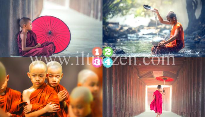 Scegli un giovane buddhista e ascolta le sue sagge parole