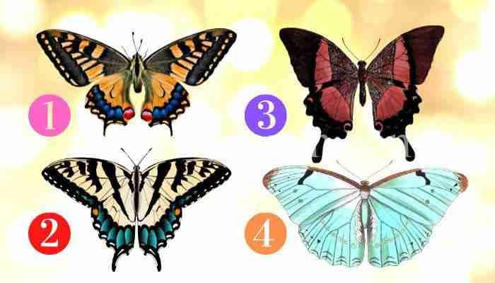 Scegli una farfalla e scopri quali meravigliose novità sono in arrivo