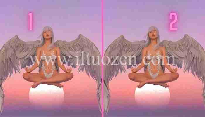 Scegli un angelo della meditazione e ti insegnerò a curare l'anima dal veleno che la contamina