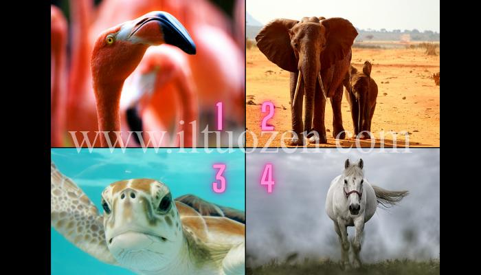Qual è il tuo animale guida? Dimmelo e descriverò chi sei realmente: